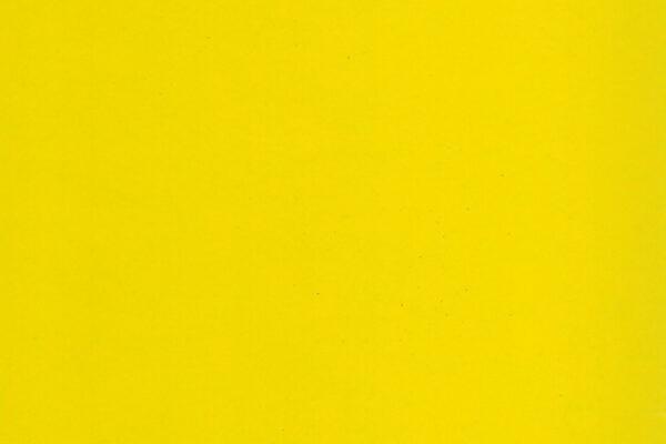 Canary 31485-2 ly