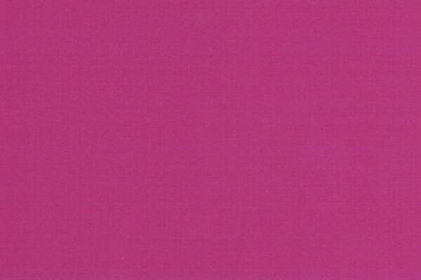 Fuchsia 1813-3 ly