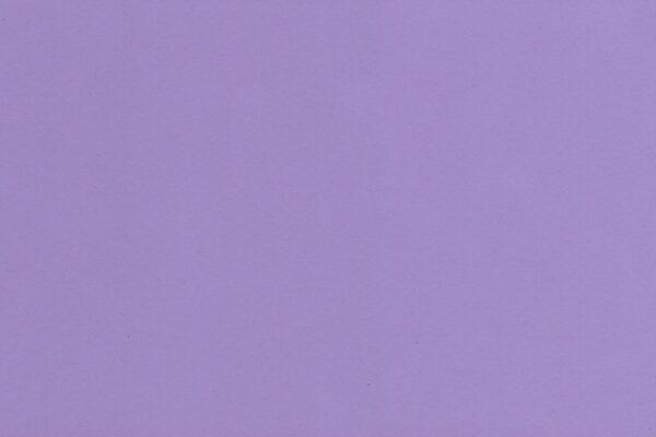 Lavender 1812-2 ly